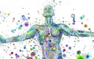 The Human Microbiome | Interesting Facts