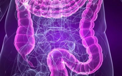 Do you have a LEAKY GUT but don't know it?